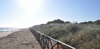 Parco dune costiere rispristino spiaggia duna 7