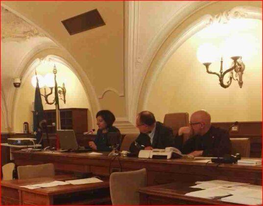 Audizione Senato Vasca Pilone