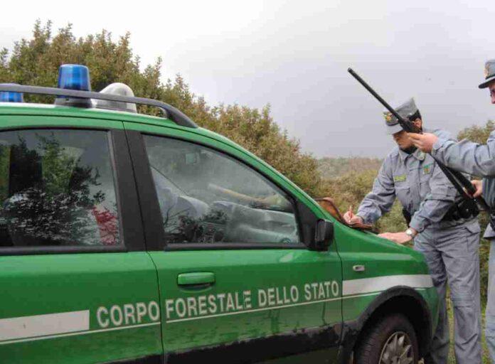 corpo forestale stato Brindisi bracconaggio